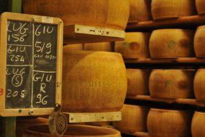 parmigiano cheese