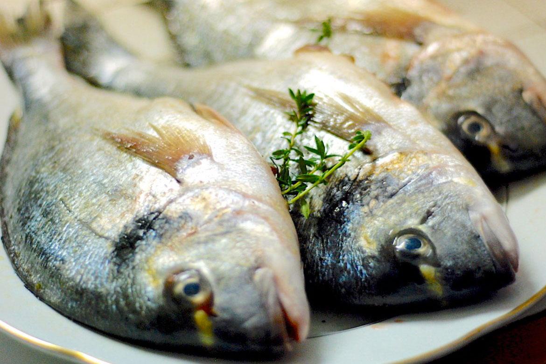 pesce, settembre, quale pesce acquistare, ricette con pesce
