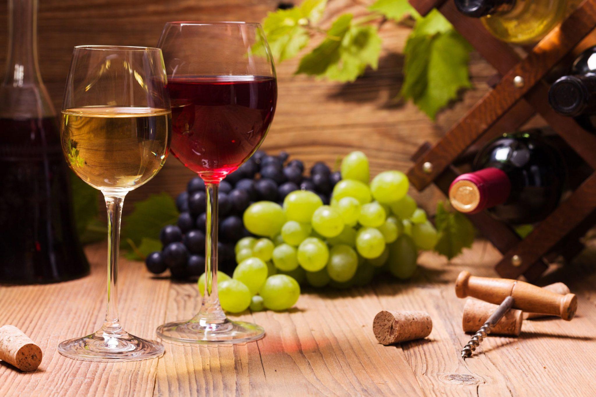 Wi-bev, vino, verona, fiere, beverage, technologies, vin, beverage, technologies, Technologien, Wein
