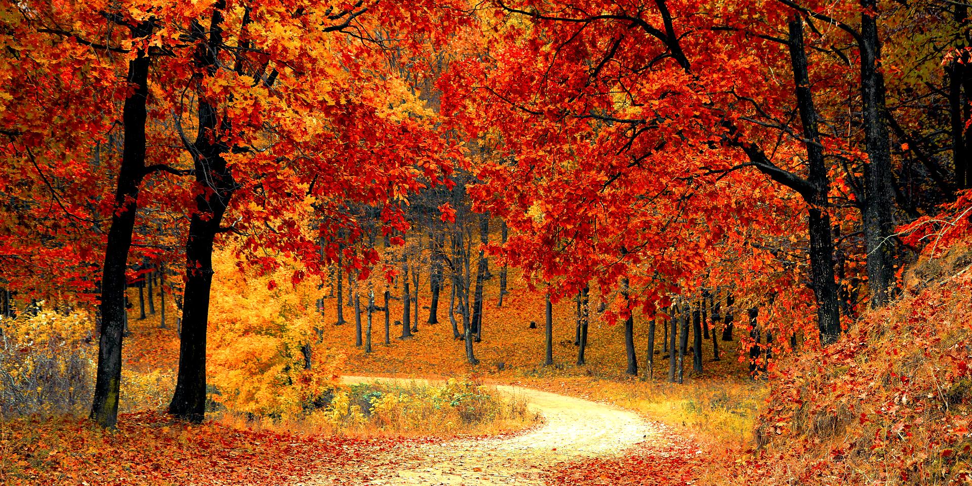 città colorate italia autunno