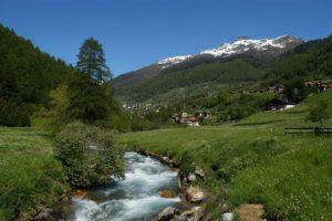 boschi-italia