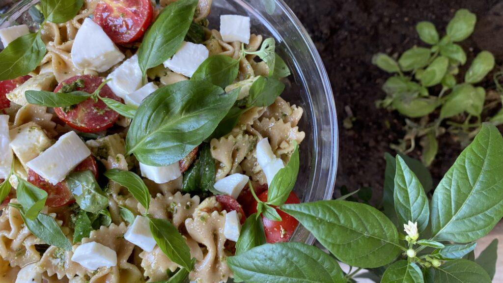 Pasta tricolore - italian traditions