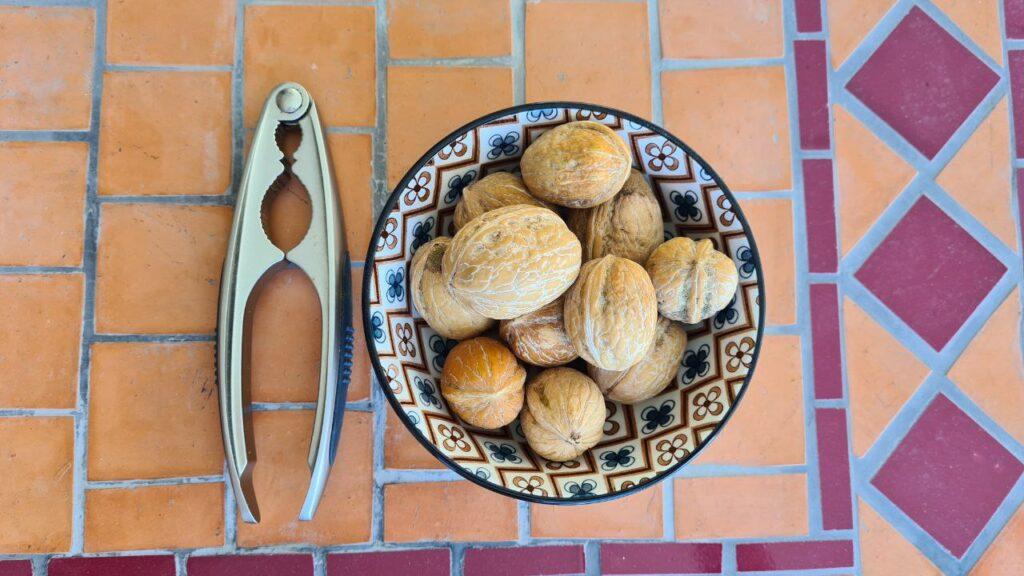 noix fraîches de Sorrente-Italian-Traditions
