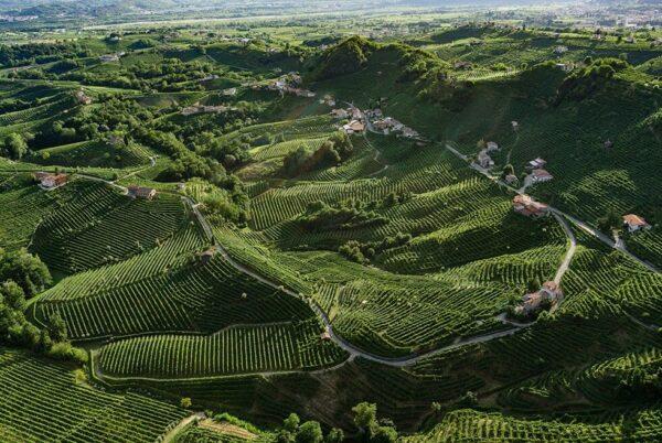 colline prosecco - italian traditions (1)