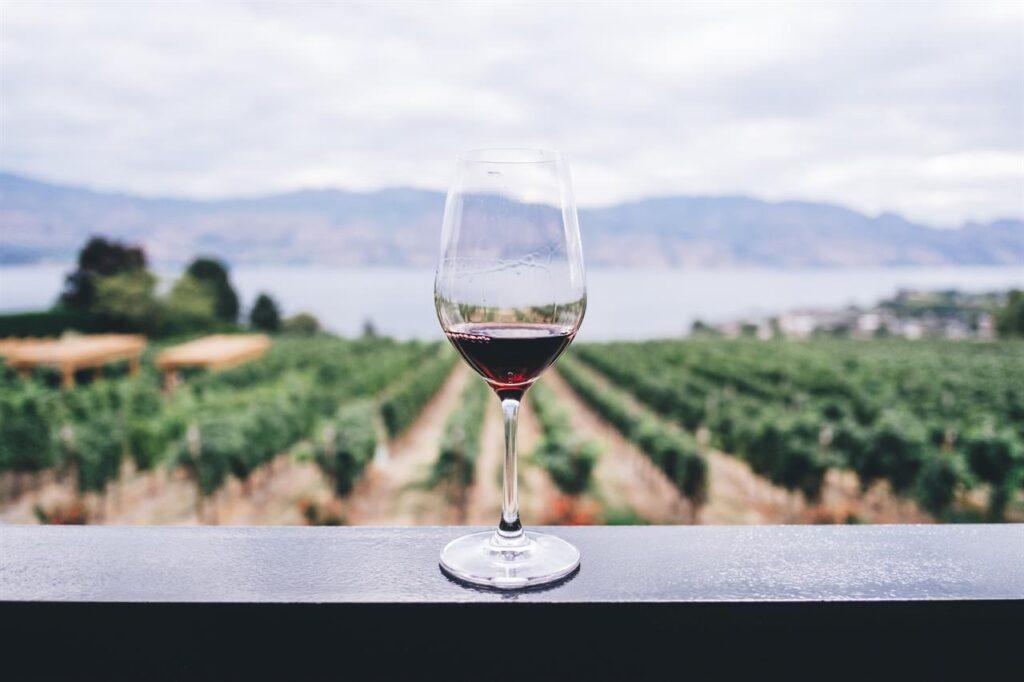 vini rossi per le sere dautunno-italiantraditions